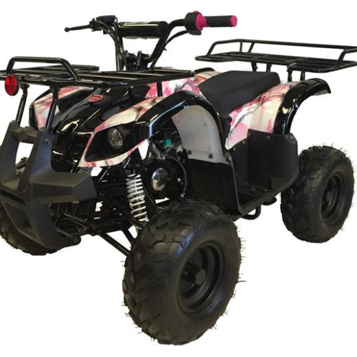 Mountopz 125-RX6 ATV