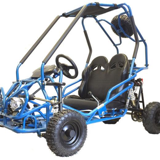 GK110 110cc Go Cart