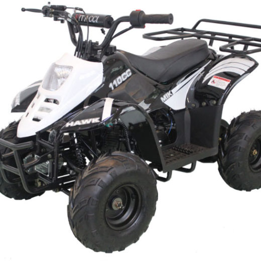 Hawk 6″ 110cc ATV