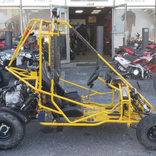 2017 110cc Go Cart